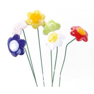 Mini Blütenstick Daisy 6 Farben sortiert