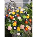 Mini Blütenstick verschiedene Blüten 6 Farben sortiert