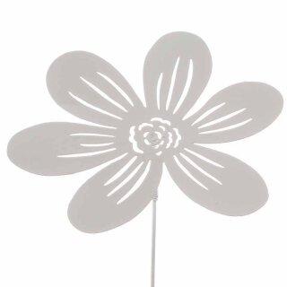 Stecker Blüte
